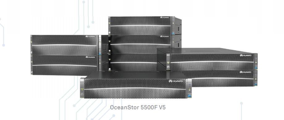 OceanStor5500F